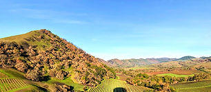 Backroads Napa Valley.jpeg