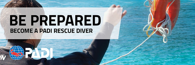 Rescue-OnlineBanners_EN_4.jpg
