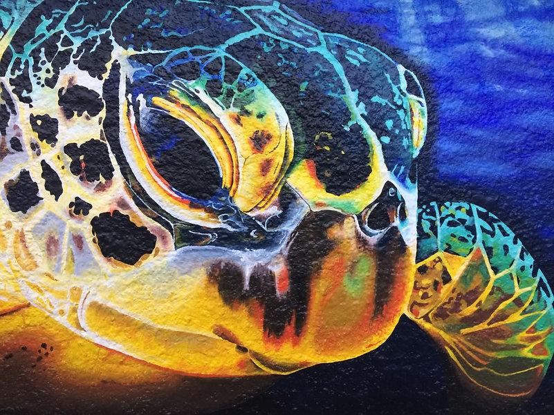 Isla Mujeres Turtle
