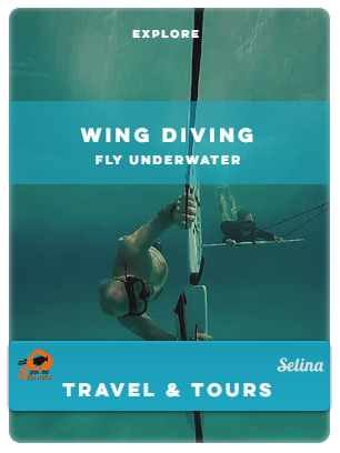 Flyer WING DIVING.PNG