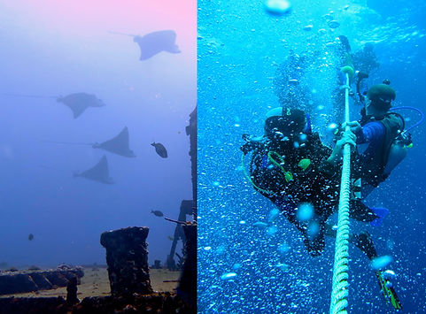 Wreck dives Isla Mujeres