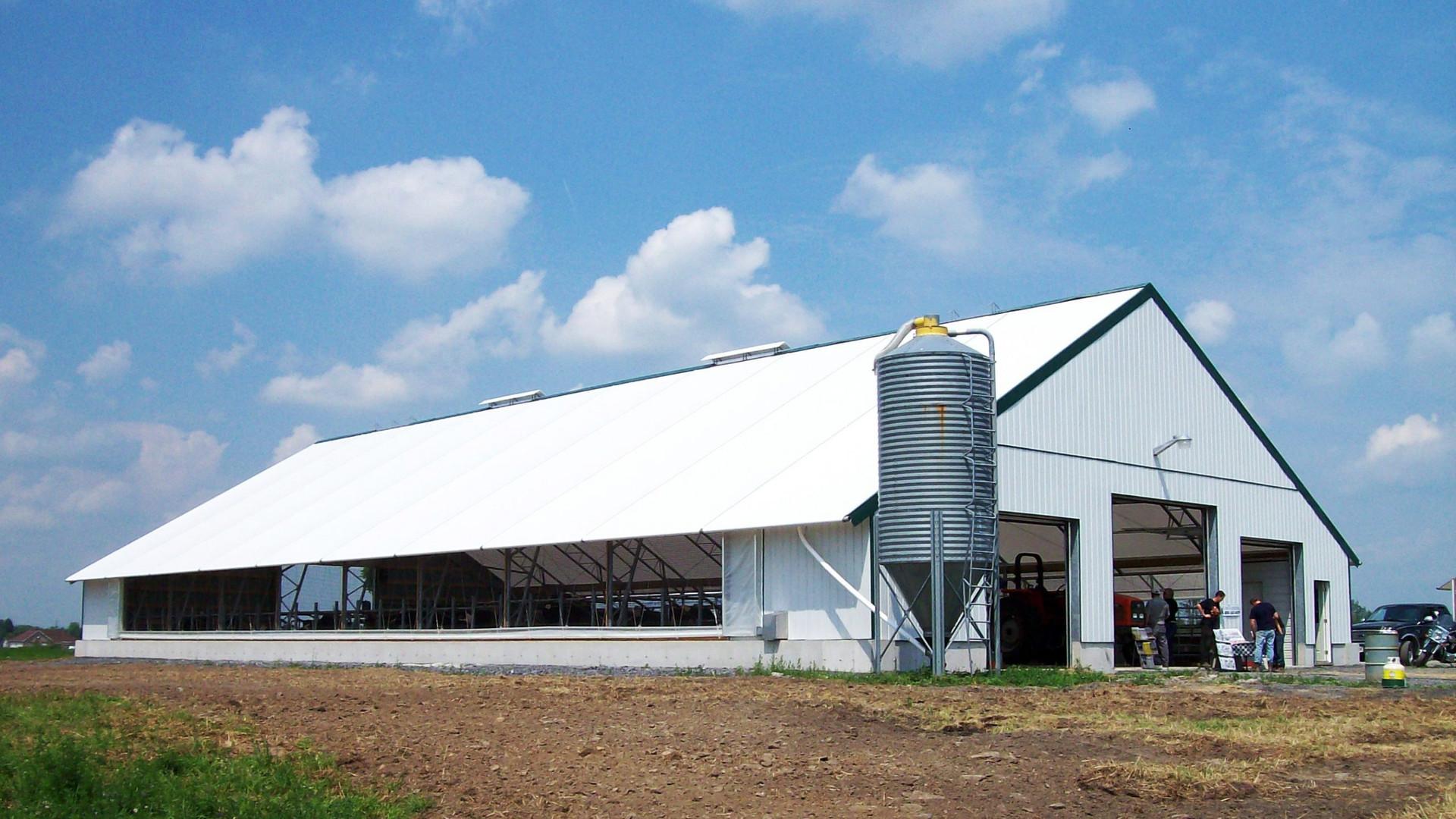Cattle Building 2.jpg