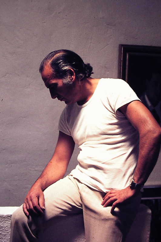 Juan Antonio Guirado in studio in Los Villares , Jaen 19