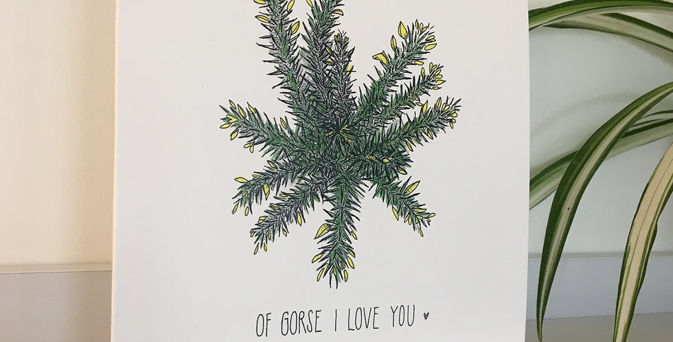 Of Gorse I Love You Greetings Card
