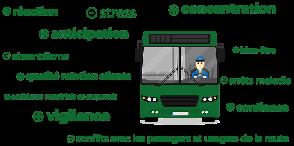 bénéfices conducteurs de bus tram coaching conducteur préparation visuelle et cognitive mobility consulting sport vision performance
