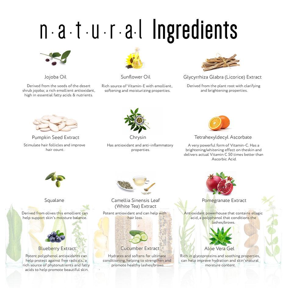 Natural Ari Brands Ingredients