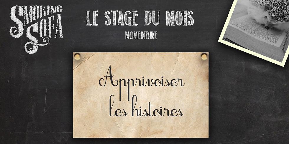 """Stage """"Apprivoiser les histoires"""" - 2 jours"""