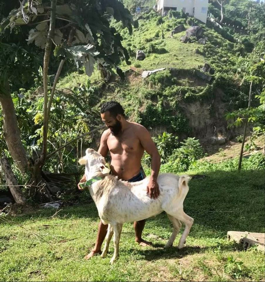 Elvin Brito and Poncho the goat in Puerto Rico