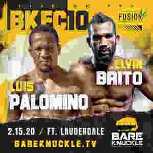 Elvin Brito, Luis Palomino, BKFC 10