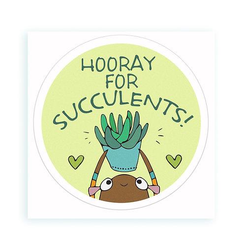 Succulents - sticker