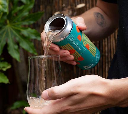 Cabana Cooler Bird & Blend Basement Beer