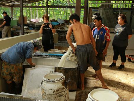 タイのゴム農園で経験したこと ③