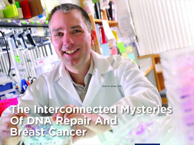 The Interconnected Mysteries of DNA repair and Breast Cancer