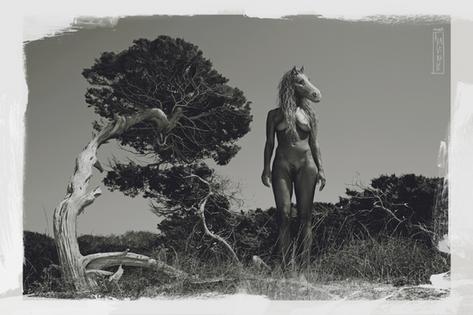 Desnudo Mujer Caballo-Mixed Media-Collage Digital-Mar Callejon-Mar AlaVirulé
