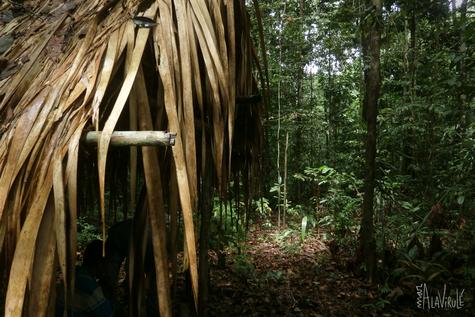 Cabaña Selvática- Amazonas, Brasil