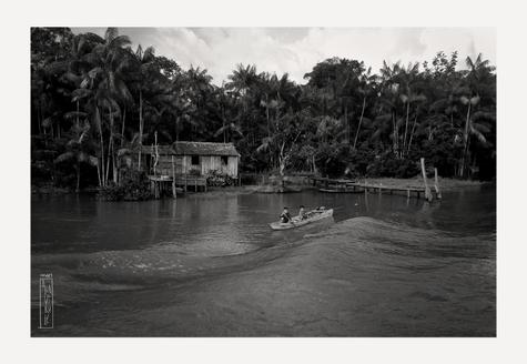 Vida en el Rio- Amazonía Brasileña
