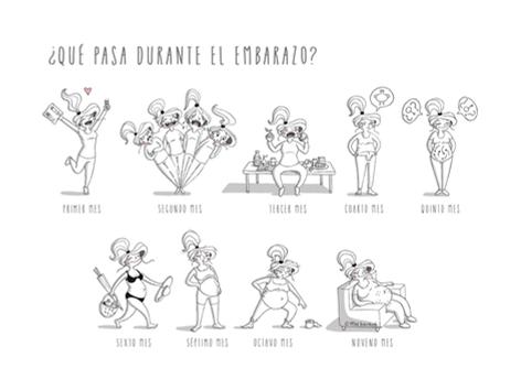 ilustracion-Qué pasa durante el embarazo?