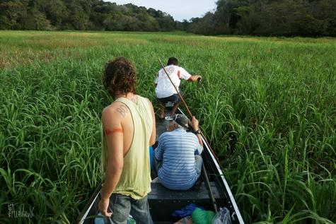 Surcando los Ríos- Amazonía Brasileña