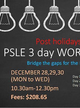 PSLE 28-30Dec workshop.JPG