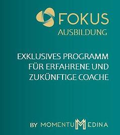 FOKUS Website D Update short.JPG