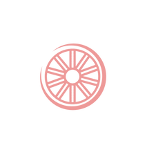 pink wheel icon-07.png