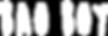 BaoBoy-White-Logo-Web-min.png
