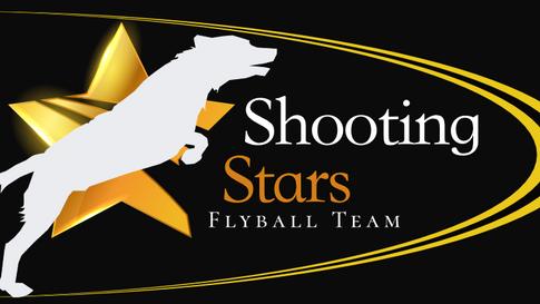 Shooting Stars - Logo