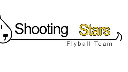 Shooting Star - Logo 1