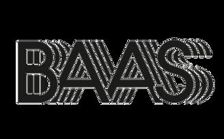 BAAS_web_1.png