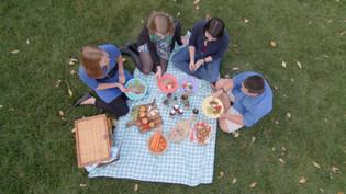 Overhead shot for menno tea online ad