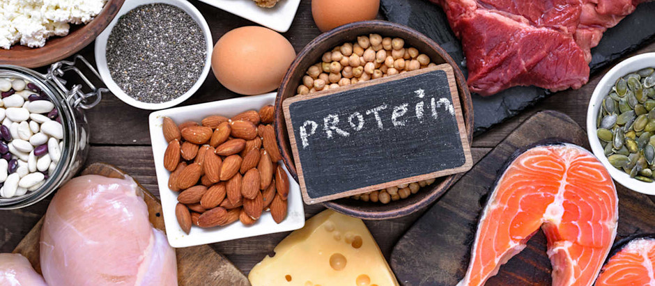 PROTEIN 101 - PROTEIN IMPORTANCE