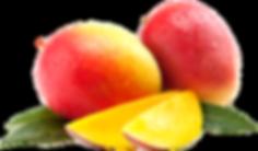 Mangoes 2.png