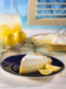 Lemon 10inch SLICE_high res.jpg