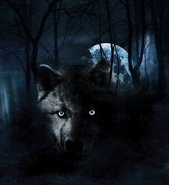 bigstock-Wolf-and-full-Moon-20088239 copy.jpg