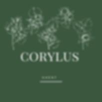 corylus (1).png