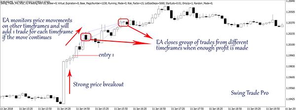momentum ea strategy 1