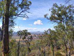 View of Mt Walker