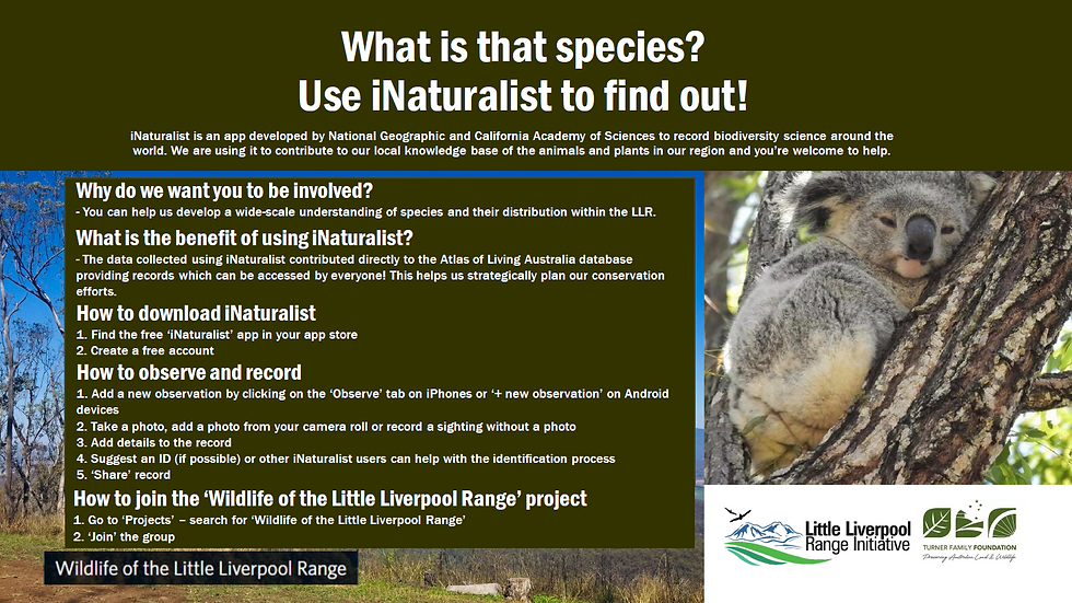 iNaturalist how to for inat comp.PNG