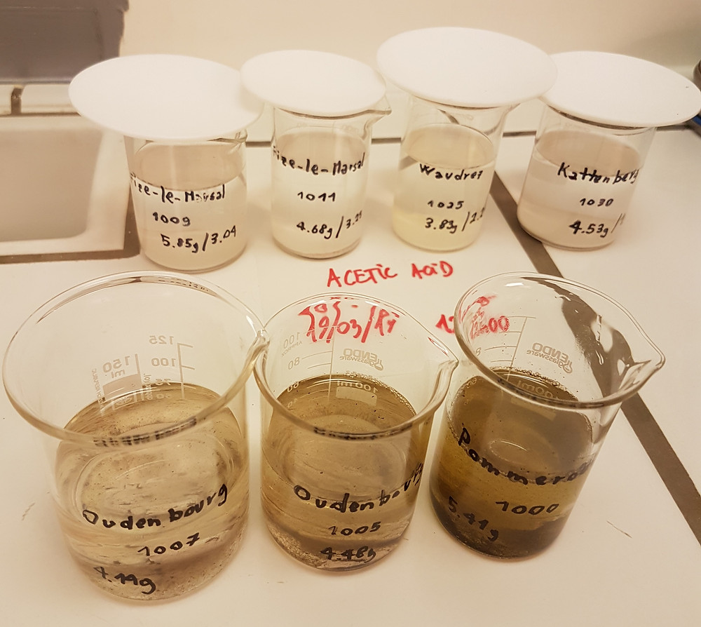 Secondary Carbonates removed using 1% acetic acid.