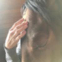Equine CranioSacral work