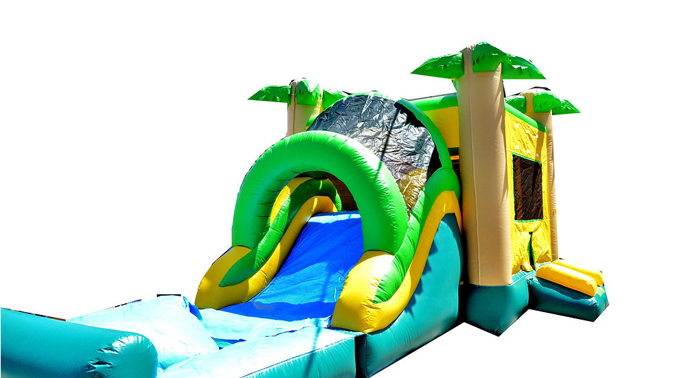 Tropical Mega Wet Dry Inflatable Bounce House and water slide