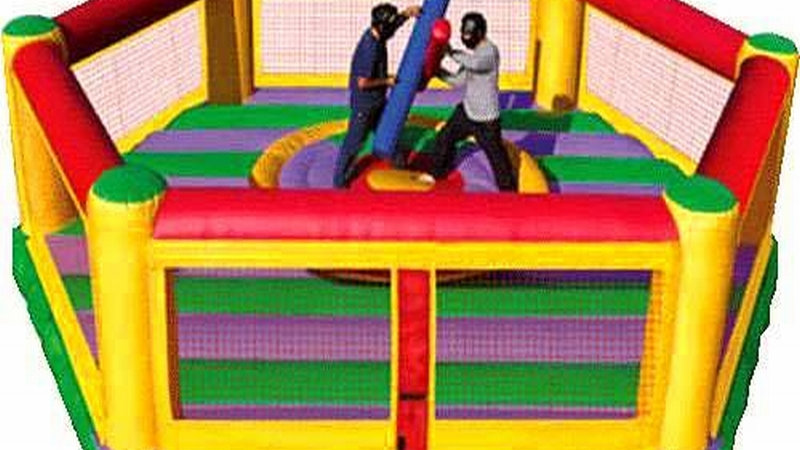 Boxing Interactive Joust Game