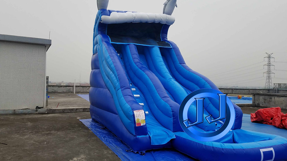 Ocean Wave Dual Lane Water Slide With Dolphins