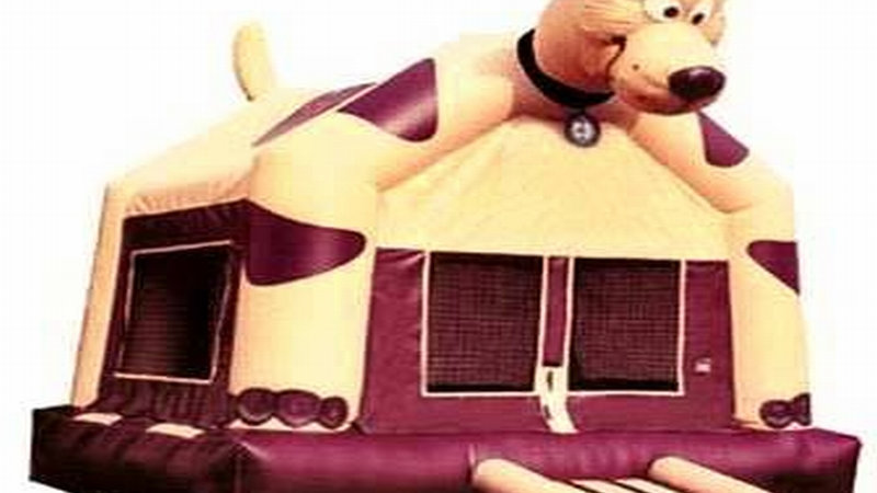 Inflatable Dog Jumping House