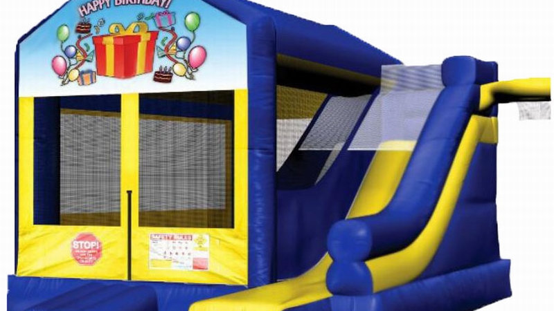 Inflatable Party Jumping Castle