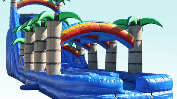 Tropical Dual Lane Water Slide