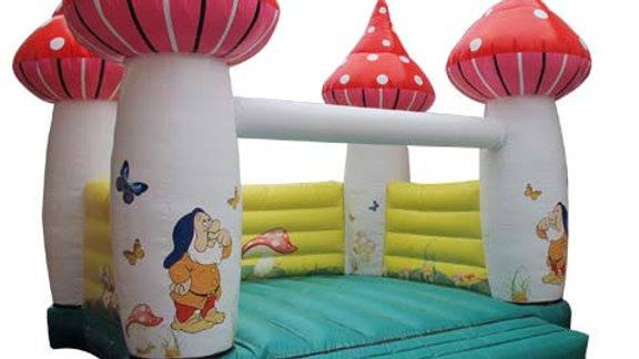 Magical inflatable mushroom jumping castle