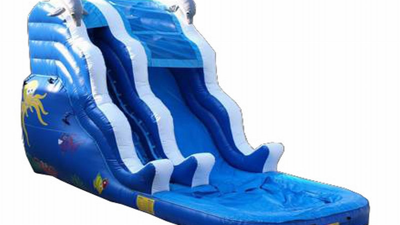 Blue Sea Dolphin Water Slide
