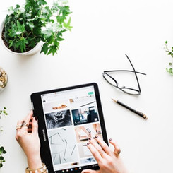 10 Best of the Best Plants For Your Workspace