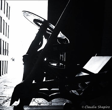 Claudia Shapiro, Portafolio Blanco y Negro